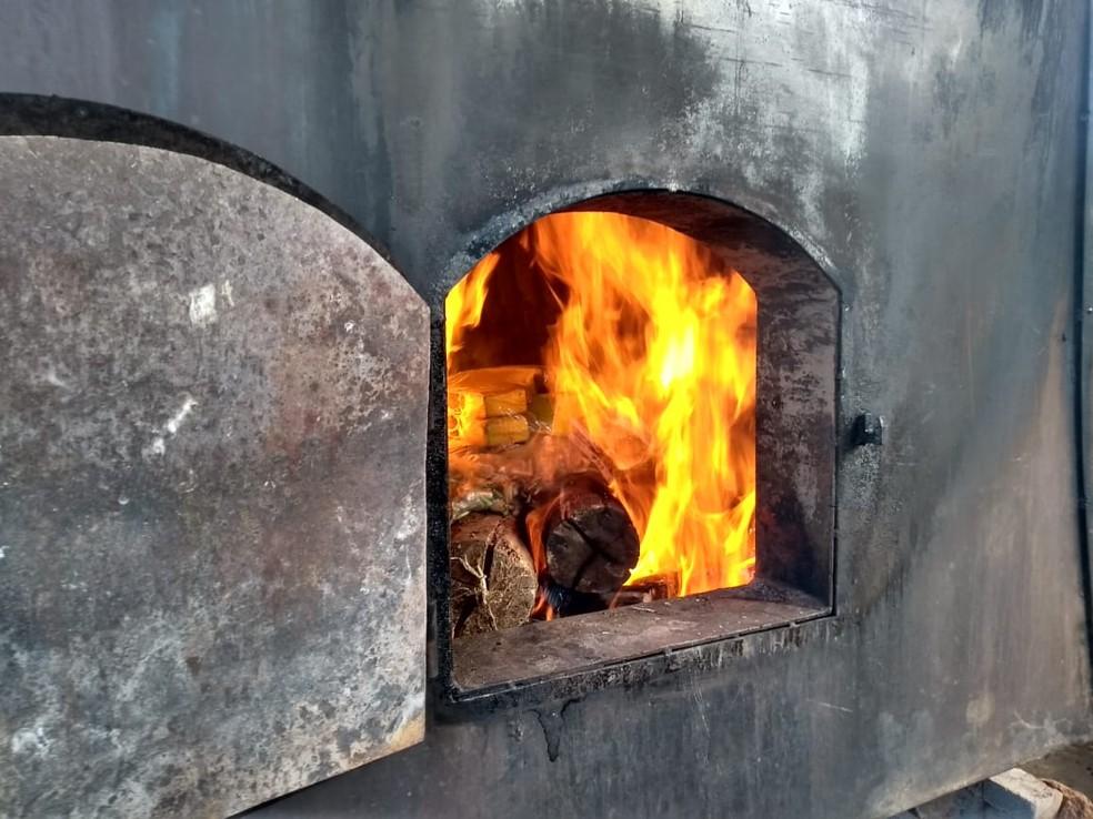Polícia Civil incinera mais 175 kg de drogas apreendidas em Ubá